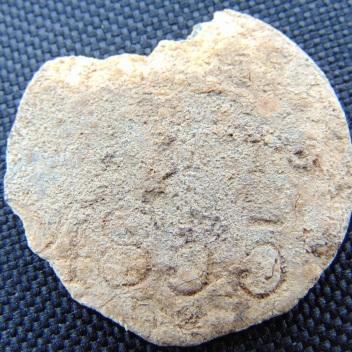 Ciresoaia Adrian 017